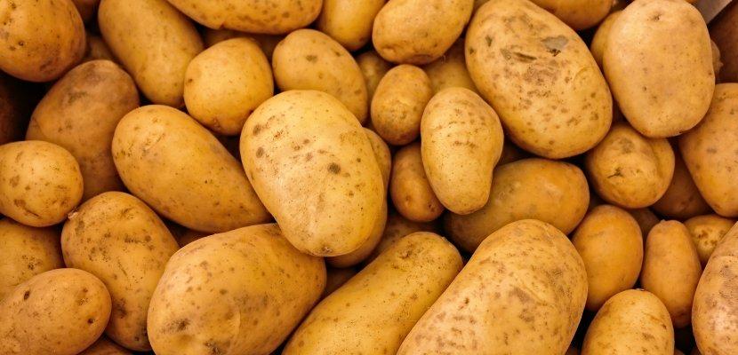 potatoes-411975.jpg