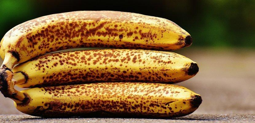 bananas-1735006_19202.jpg