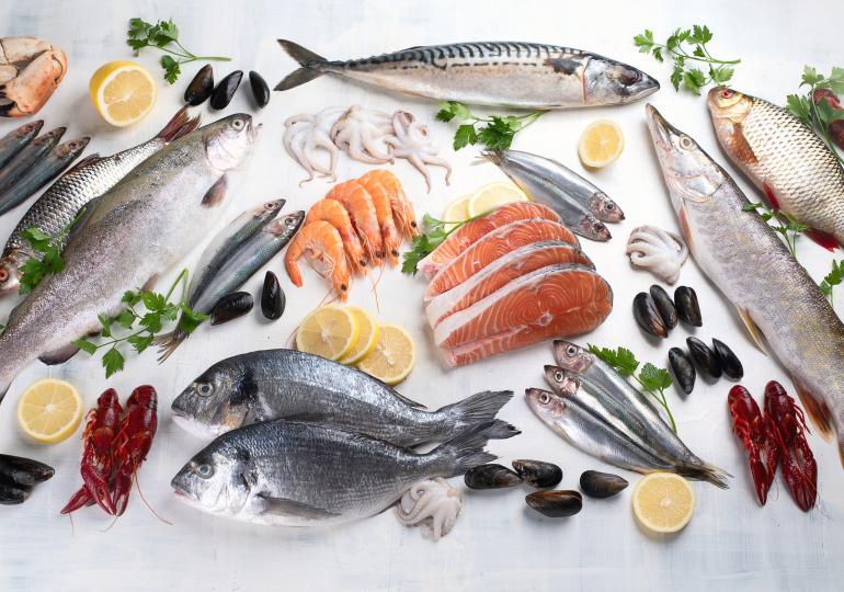 Frischfisch und Räucherspezialitäten
