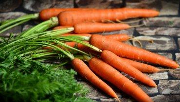 Das fast vergessene Gemüse – Zurück zu den Wurzeln