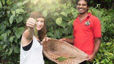 Yummy Organics – Fair gehandelte Gewürze direkt von Kleinbauern