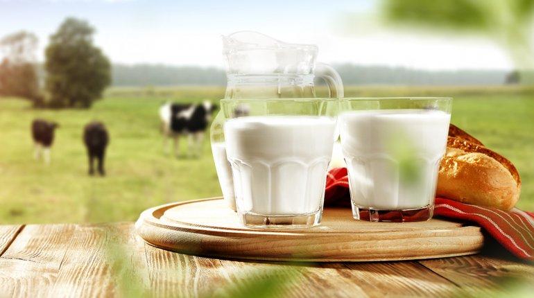 Milch schmeckt, ist gesund und wird zuverlässig kontrolliert