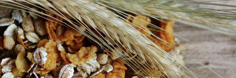 cereals-2437808_19201.jpg