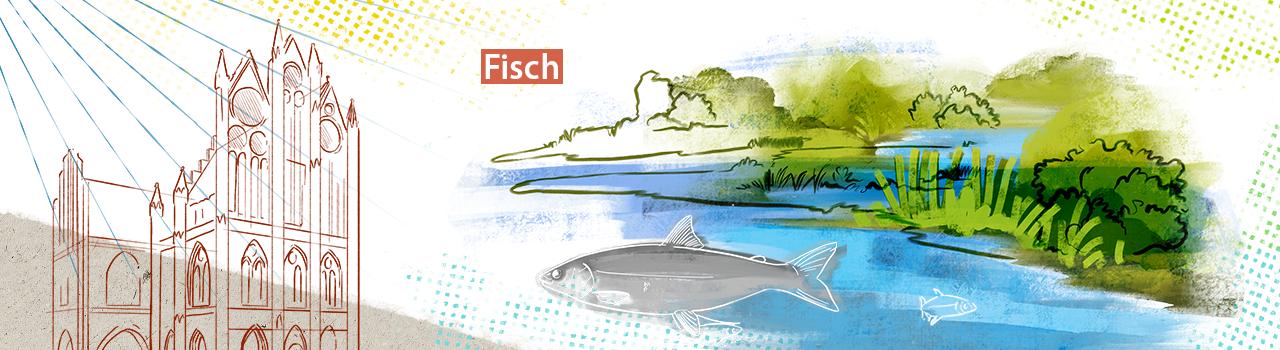 fisch-2.png