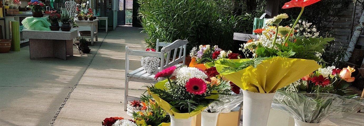 Glücksklee Blumenhandel