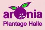 Aronia Plantage Halle