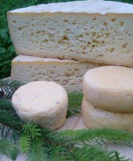 Westerhäuser Käsehof