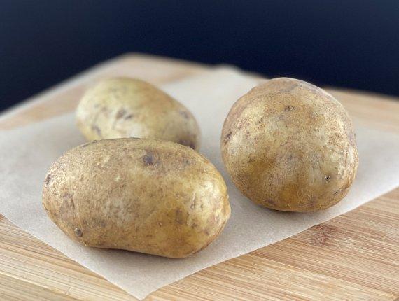 Speisekartoffeln - vorwiegend festkochend - Sorte Agria - Neue Ernte