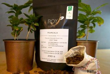 Marcala-Frauenprojekt-Kaffee