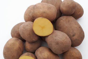 Eckhoff's Beste Bratkartoffelset 5 kg + 1 kg